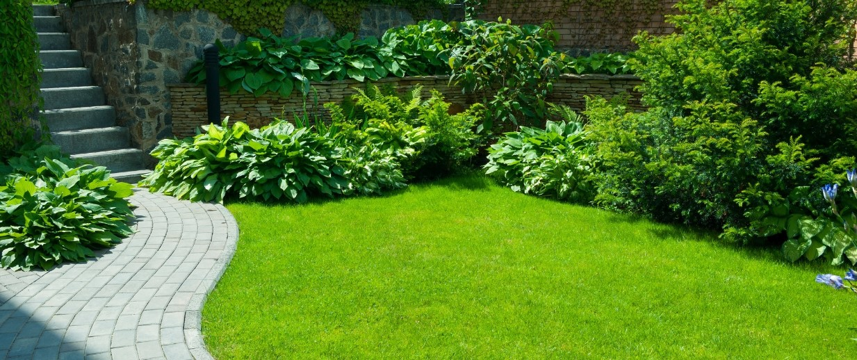 Easy Ways to Have a Great Garden